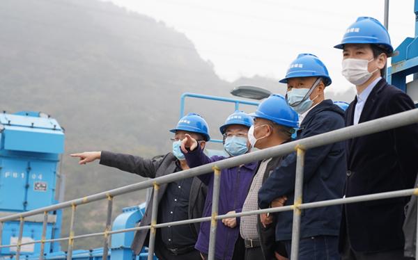 杨作军带队调研农贸板块相关地块情况